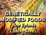 "Watch for the New Episode, ""Genetically Modified Foods"" on The 411 Live"